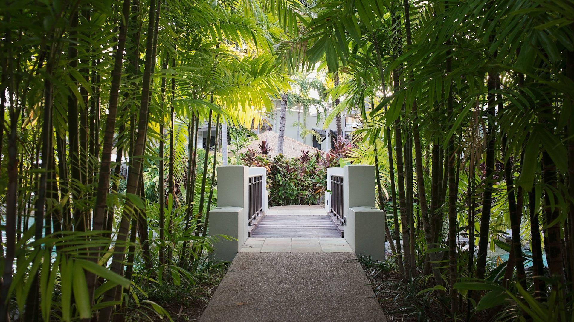 Sea Temple Resort Swimout Apartments 005
