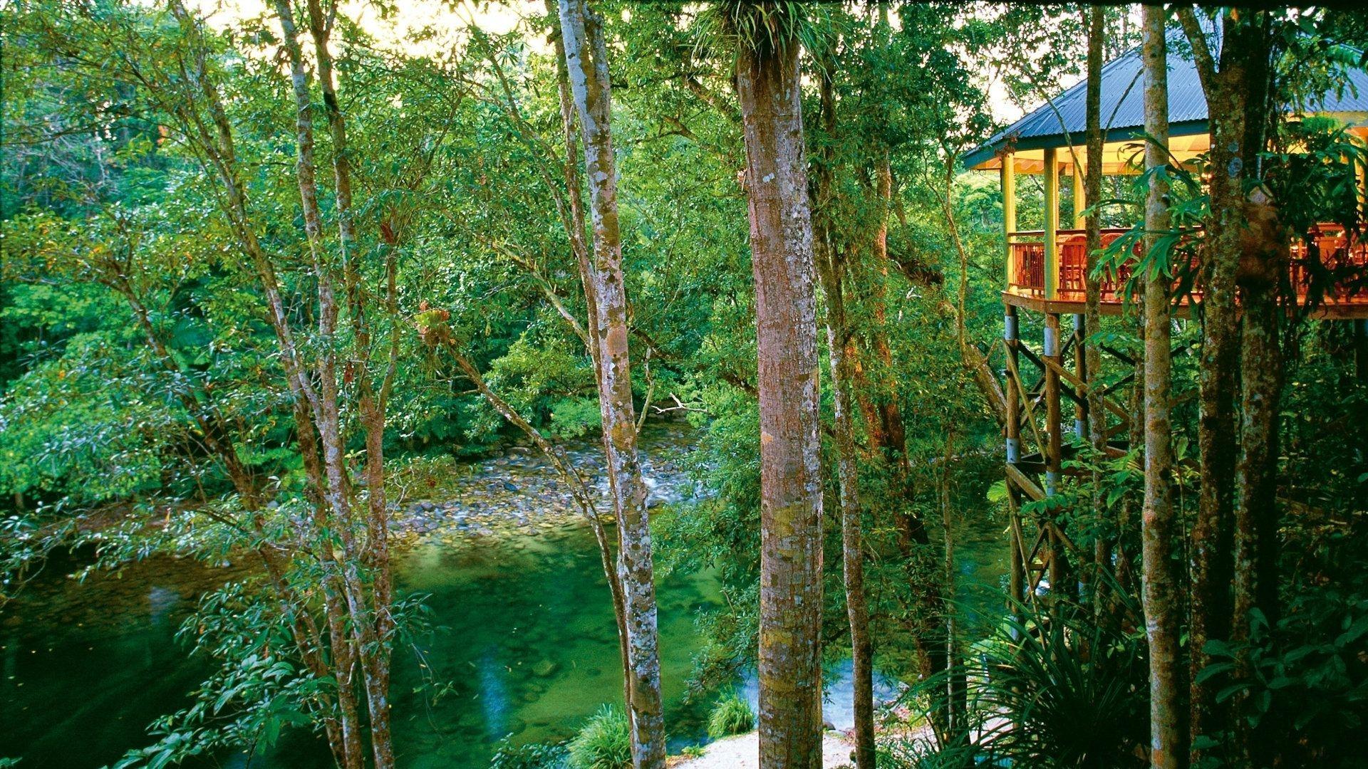 Silky Oaks Lodge 018