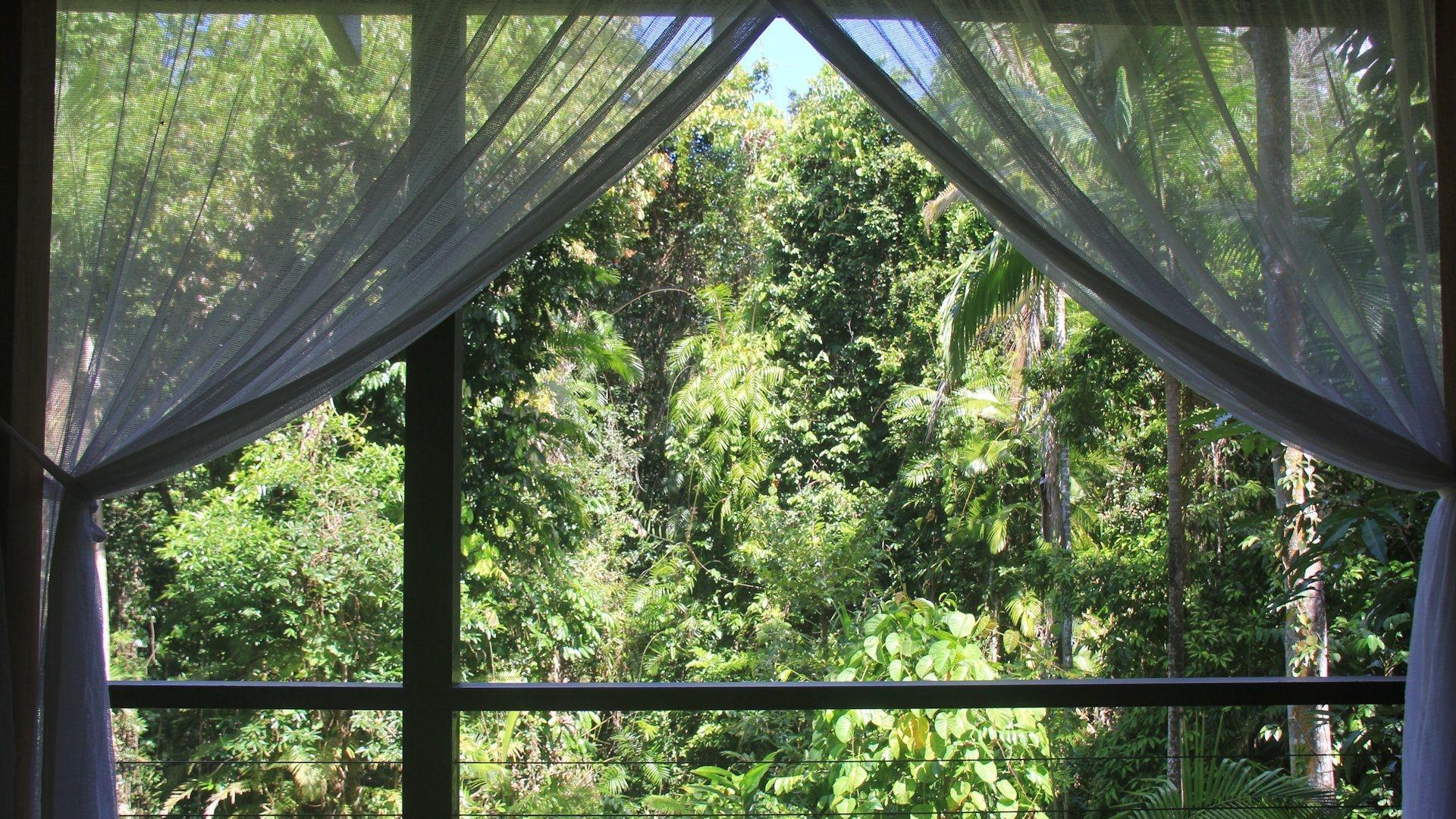 Silky Oaks Lodge 024